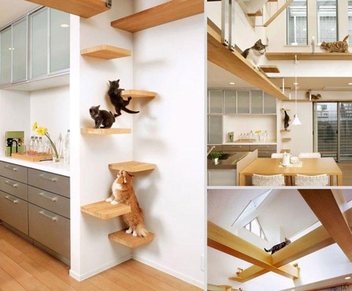 Des meubles pour chat la fois utiles et designs cuboak - Que doit contenir un appartement meuble ...