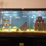 aquarium mario