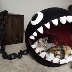 jeu mario chat