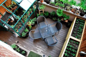 potager appartement