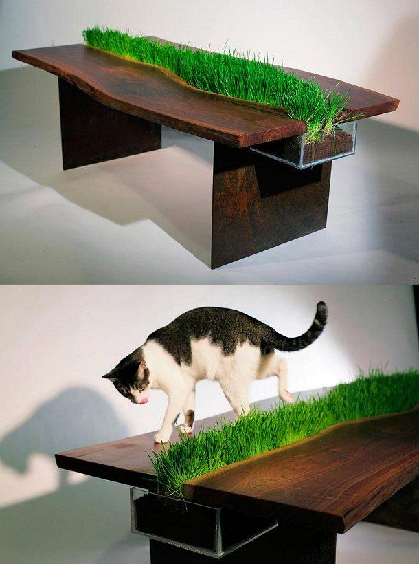 Des meubles pour chat la fois utiles et designs cuboak - Parcours mural pour chat ...
