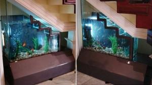 aquarium sous escalier