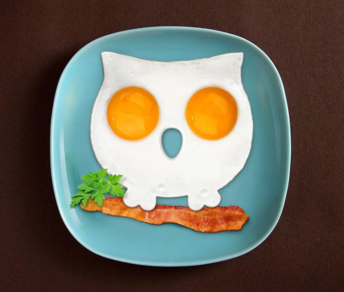 omelette oiseau