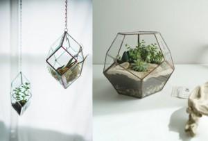 terrarium géométrique graphique design
